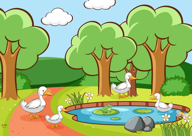 Scene with ducks in the park Free Vector