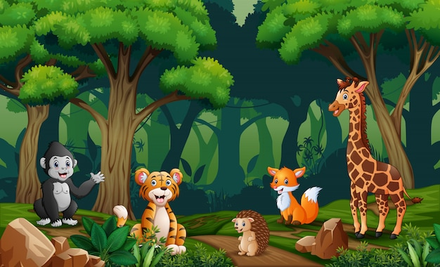 Scene with many animals in the forest Premium Vector
