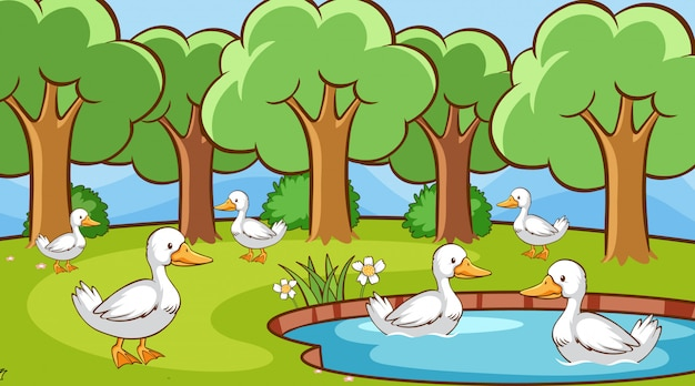 Scene with many ducks in the pond Free Vector