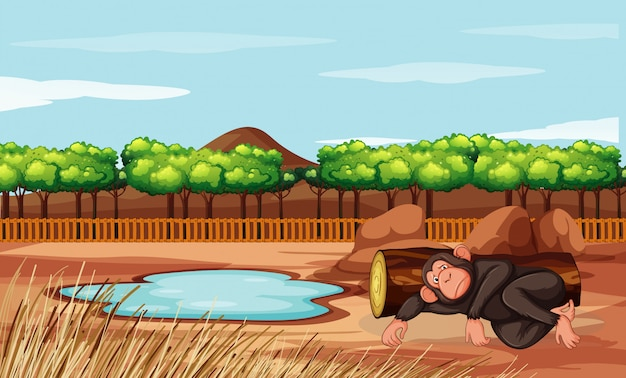 Scene with monkey in the zoo Free Vector