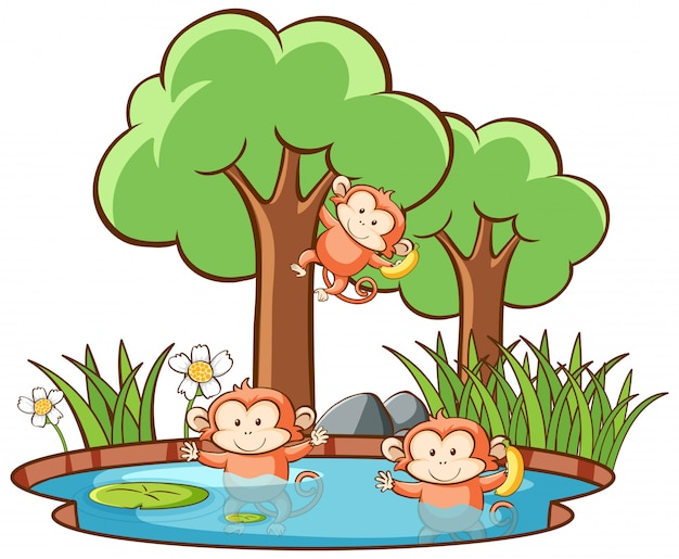 Scene with monkeys in forest Free Vector