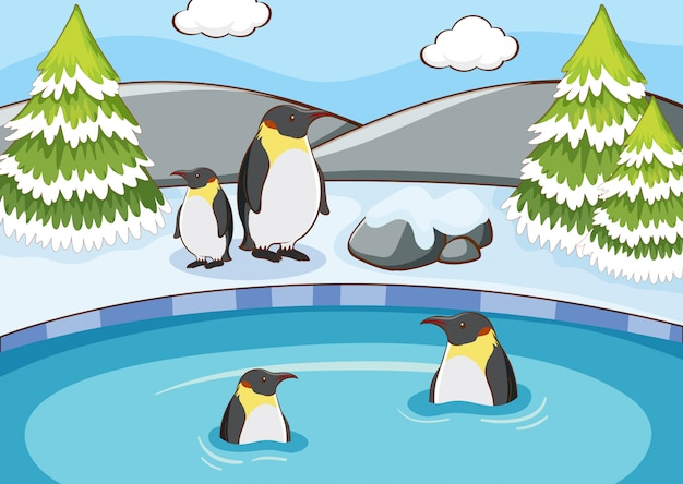 Scene with penguins in winter Free Vector