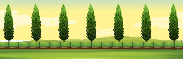 Scene with pine trees in the park Free Vector