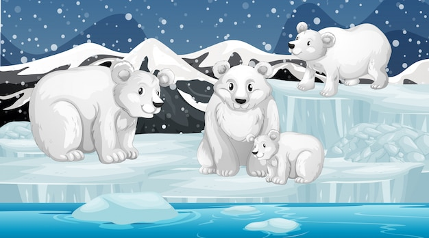 Scene with polar bears on ice Free Vector