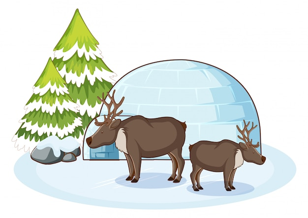 Scene with reindeers in snow Free Vector