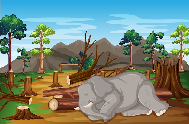 Scene with sick elephant and deforestation Free Vector