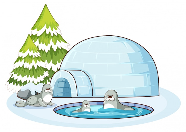 Scene with three seals and igloo Free Vector