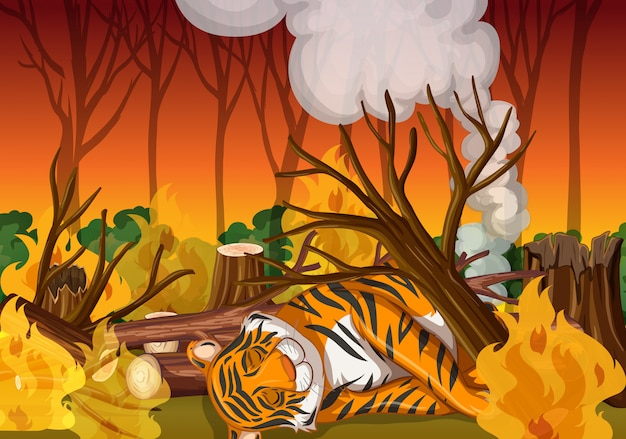 Scene with tiger and wild fire Free Vector