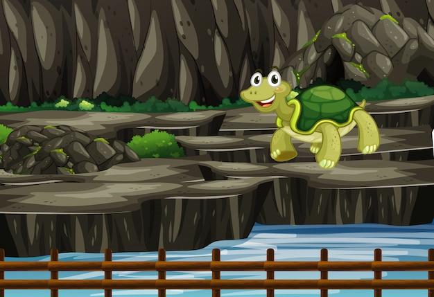 Сцена с черепахой в зоопарке Бесплатные векторы