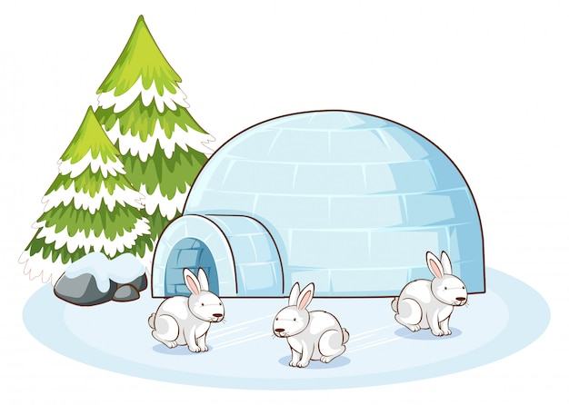 Scene with white bunnies in winter Free Vector