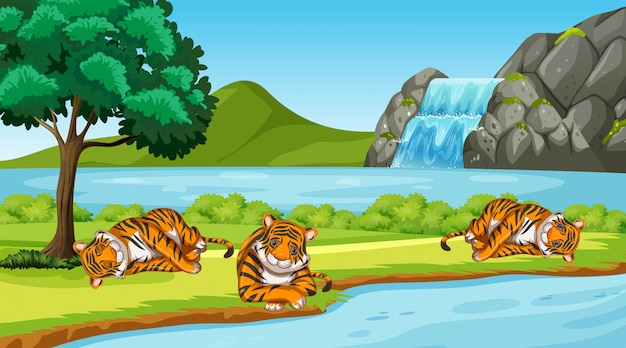 Scene with wild tigers in the park Free Vector