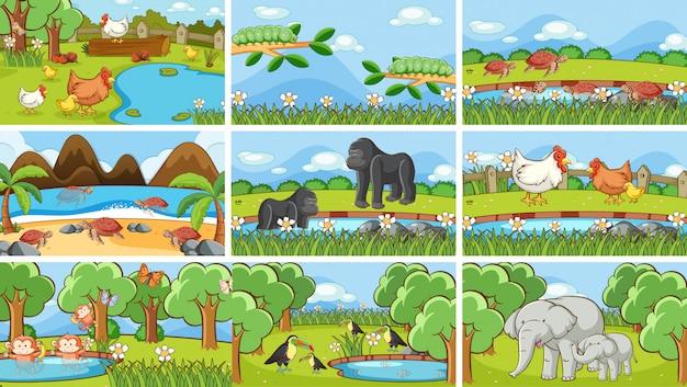 Scene di animali allo stato brado Vettore gratuito