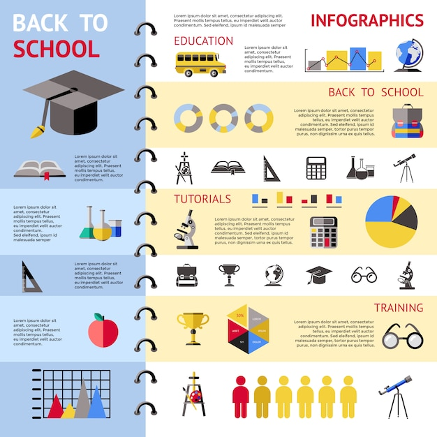 School colored infographic Free Vector