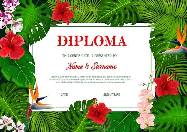 ベクトル熱帯ヤシの葉を持つ学校の卒業証書 Premiumベクター