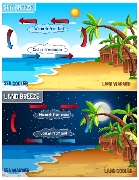 Science infographic for sea and land breeze Free Vector