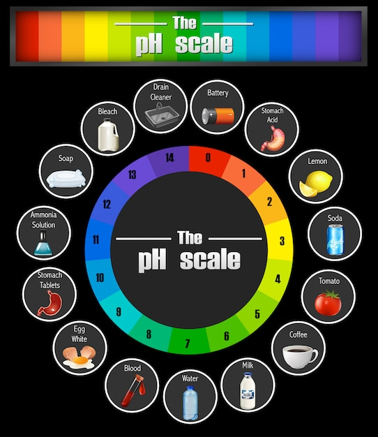 Science ph scale template Premium Vector