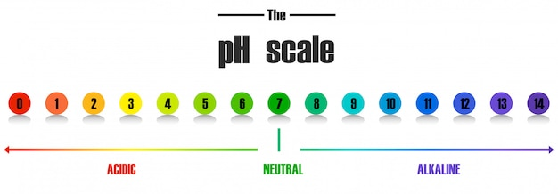Science ph scale template Free Vector