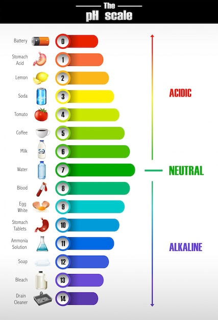 A science of ph scale Free Vector