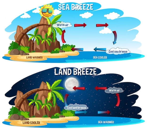 Science poster for sea and land breeze Free Vector