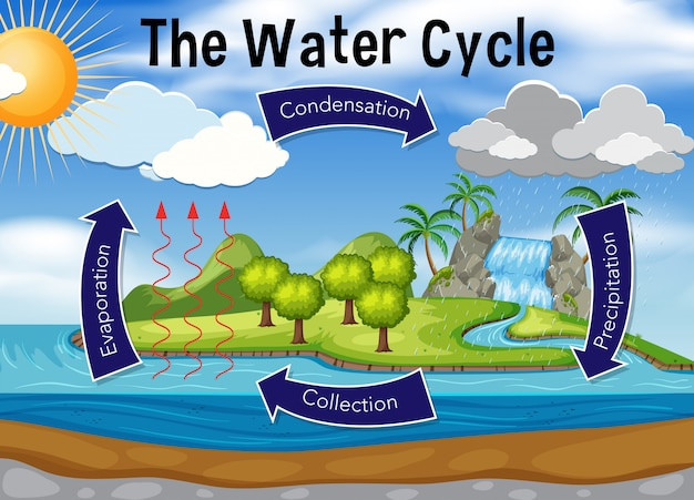 Science of water cycle Premium Vector