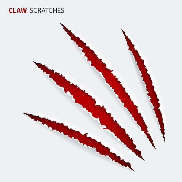 Scratch claws of animal Premium Vector