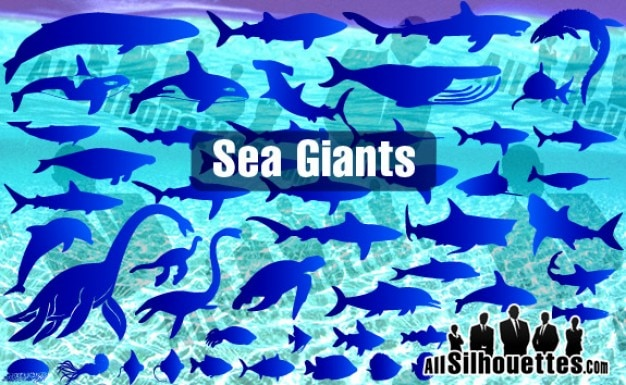 Sea & Ocean Giants