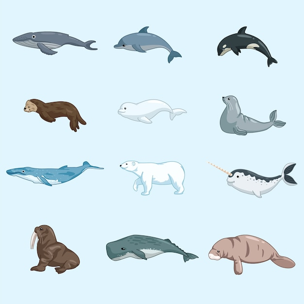Sea animal mammals set Premium Vector