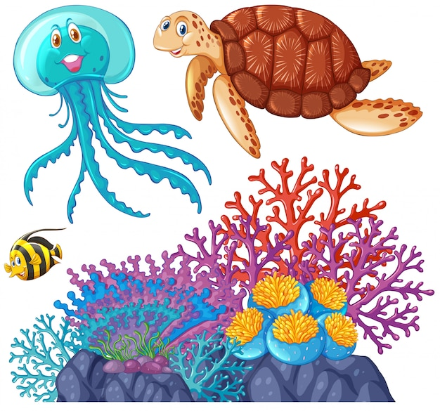 Sea animals and coral reef Free Vector