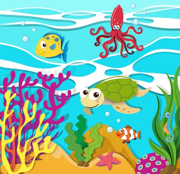 Sea animals swimming in the ocean Premium Vector