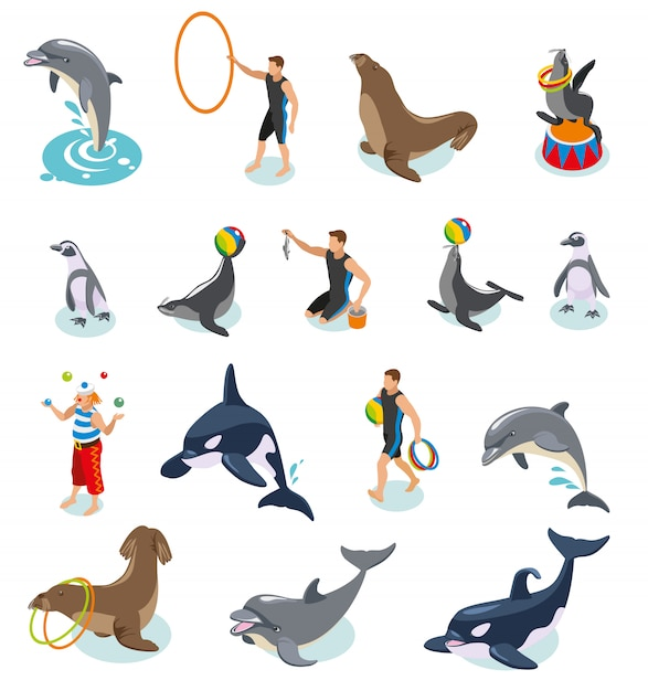 Sea circus isometric set of seals walrus penguins dolphin killer whale animal trainers and juggling clown Free Vector