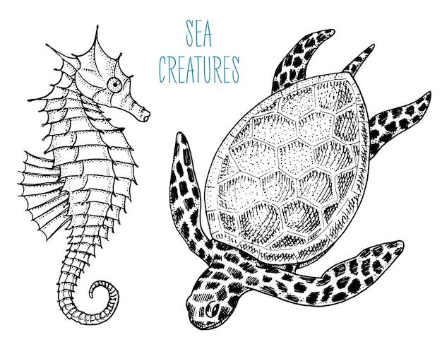 海の生き物cheloniidaeまたはアオウミガメとタツノオトシゴ。古いスケッチ、ビンテージスタイルで刻まれた刻まれた手。 Premiumベクター
