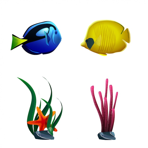 Sea fish and plants isolated on white background Premium Vector