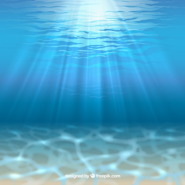 Sea floor with sunshine Free Vector
