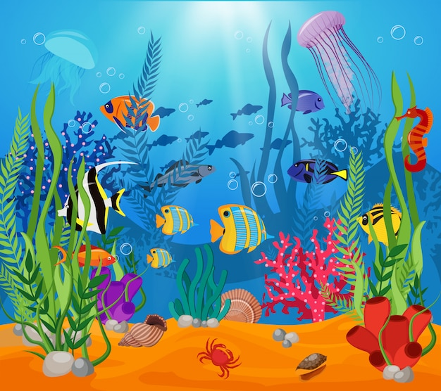Sea life animals plants composition colored cartoon with marine life and various types of algae Free Vector