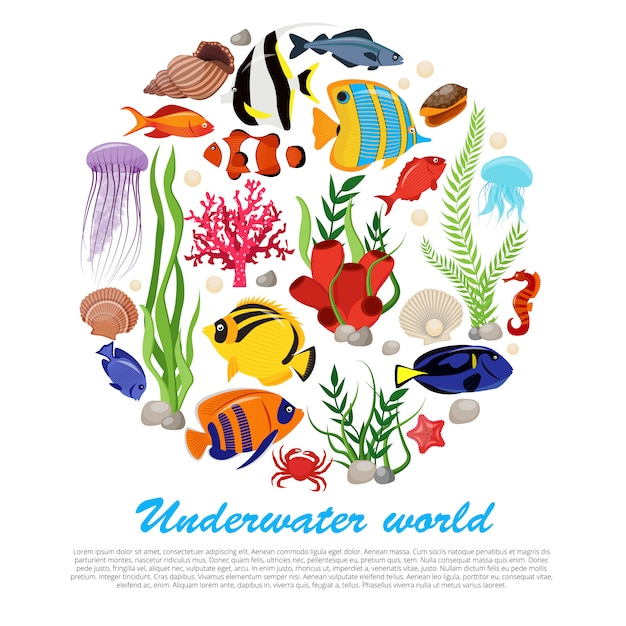 Sea life animals plants poster with isolated set combined in big round and underwater world description Free Vector