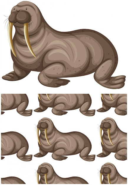 Sea lion seamless pattern isolated on white Free Vector