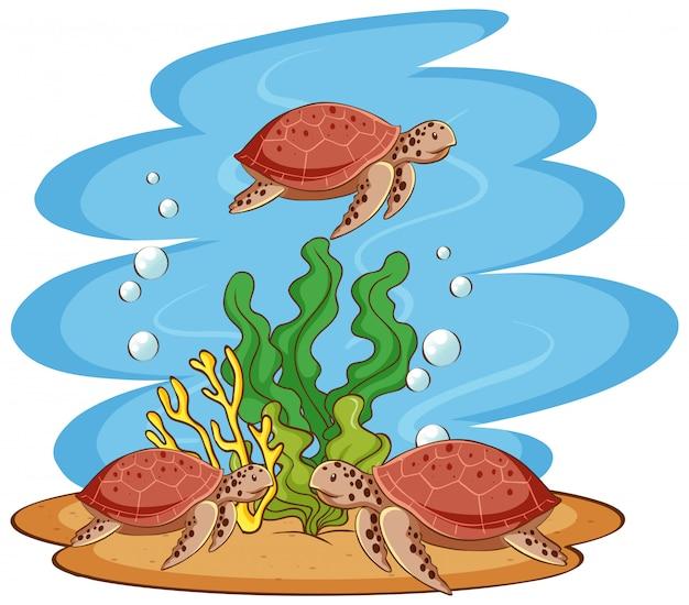 Морские черепахи плавают в океане Бесплатные векторы