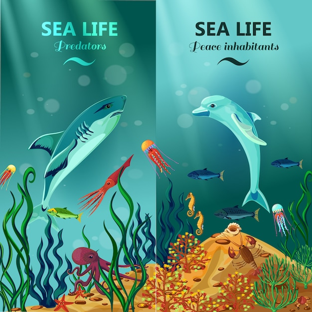 Sea underwater life vertical backgrounds Free Vector