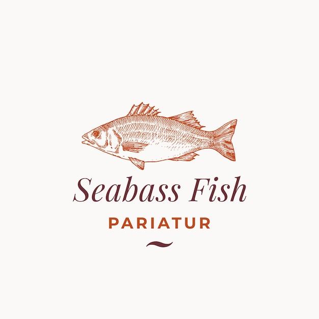 Seabass fish abstract  sign, symbol or logo template. Free Vector