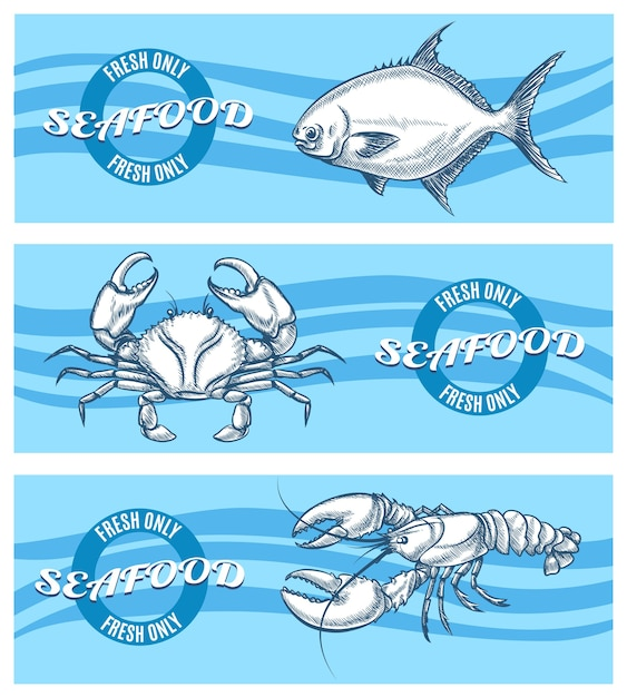 Набор баннеров из морепродуктов. Бесплатные векторы