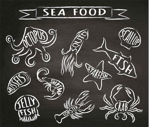 Seafood chalk contour  vector illustrations on blackboard, elements for restaurant menu design, decor, label. chalk textured grunge contours of sea animals with names. Premium Vector