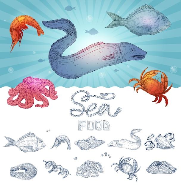 Концепция рисованной морепродуктов Бесплатные векторы