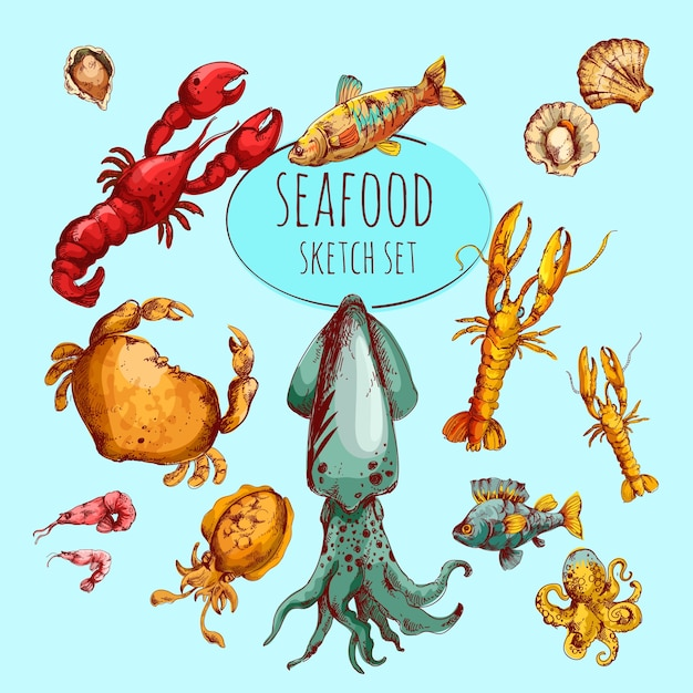 Seafood sketch colored Free Vector