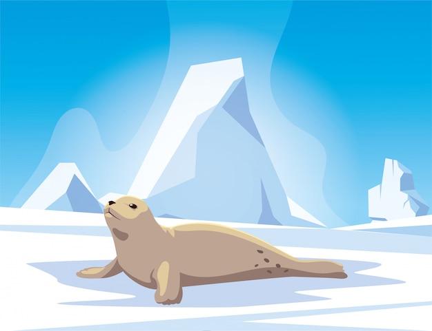Seal at the north pole, arctic landscape Premium Vector