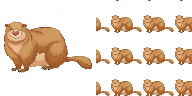 Seamless background design with fat beaver Free Vector