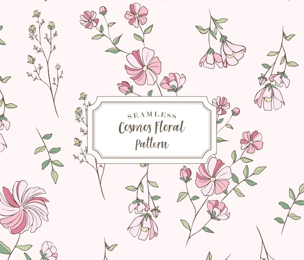 Seamless cosmos floral pattern Premium Vector