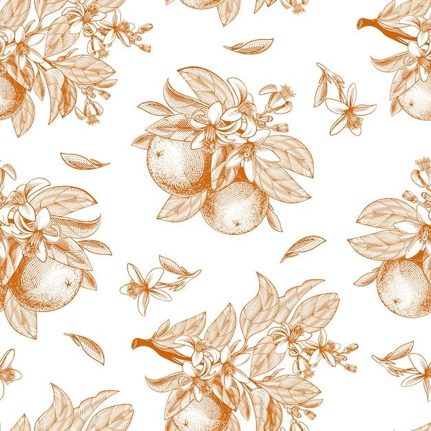 Modello senza cuciture di frutta arancione, foglie, rami e fiori che sbocciano in stile incisione Vettore gratuito