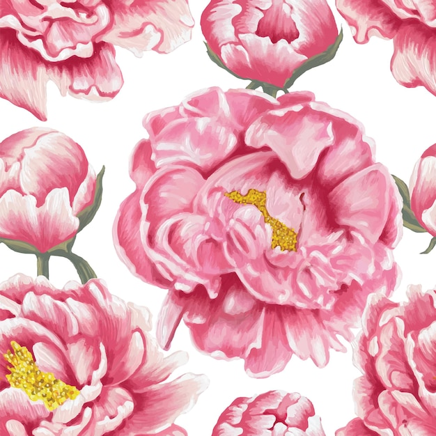 Seamless pattern pink paeonia flowers white background. Premium Vector