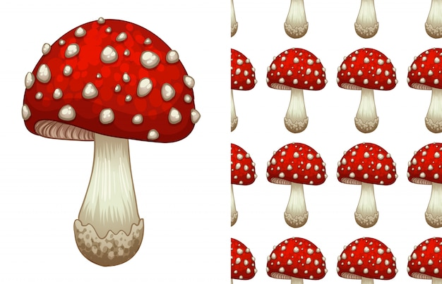 A seamless pattern of a toadstool on white Premium Vector