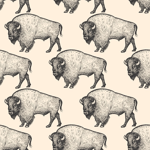 Seamless pattern with bison. Premium Vector